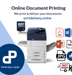Best Printers for Coloured Documents